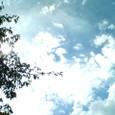夏のなごり