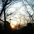 冬の朝、陽が灯る