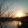 冬の朝 朝日
