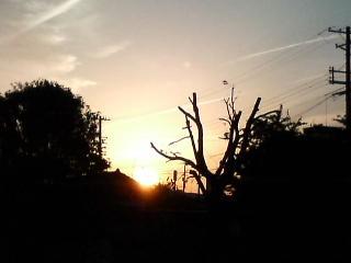 日の沈む街